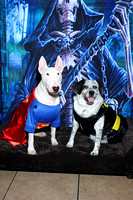 Wagging tails Halloween 10/24/15